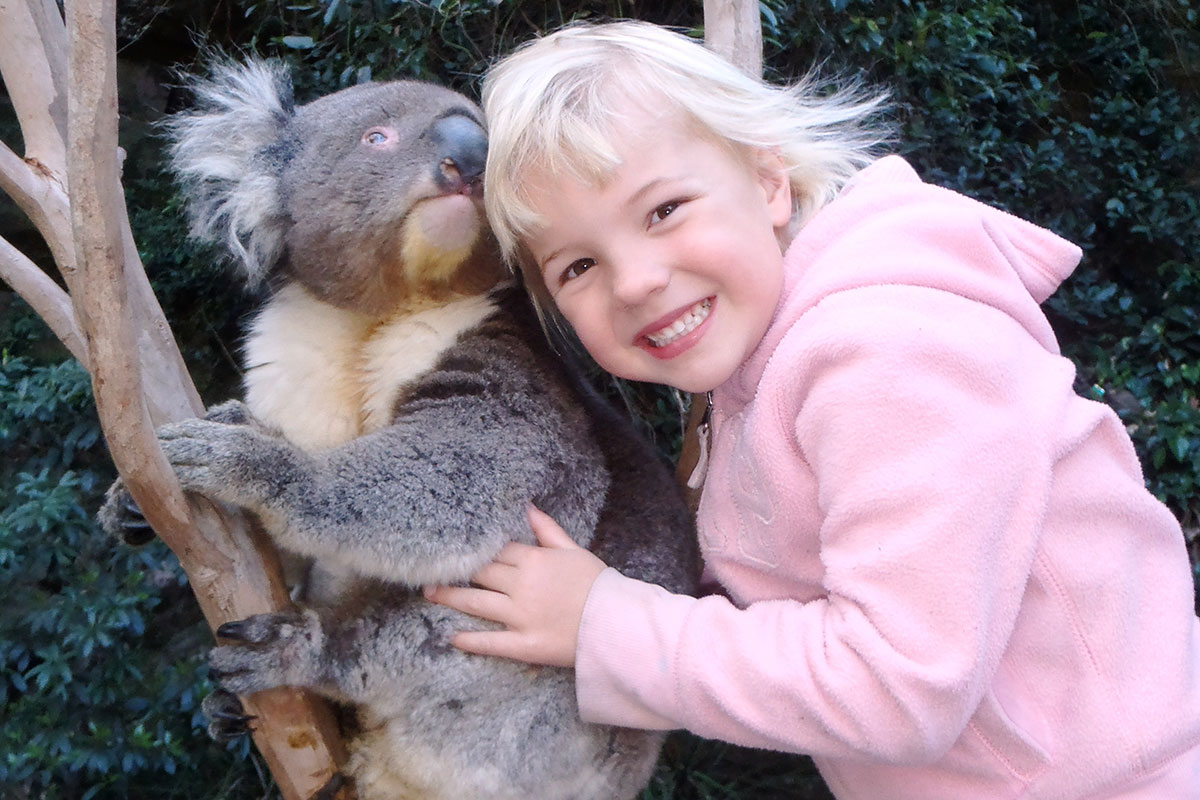 South Coast Tour Shoalhaven Zoo Cuddle a Koala