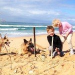 Pet friendly accommodation South Coast NSW