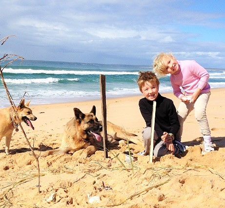 Pet Friendly Beaches, Cafes, Holiday Accommodation