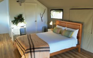 Glamping Luxury Safari Tent